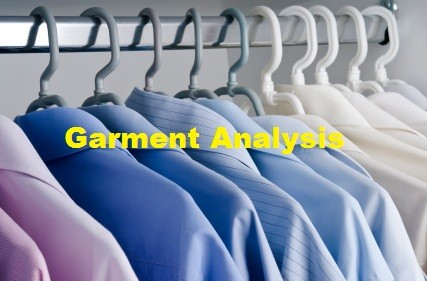 Garment Analysis