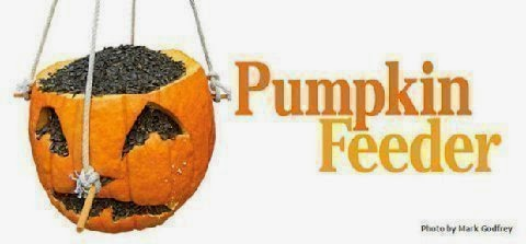 http://4.bp.blogspot.com/-Ji-SKHXbbbM/VFUAXhtdYvI/AAAAAAAA5Dg/ug50Sx5-egM/s1600/pumpkin_feeder-620x289MA29505539-0002.jpg