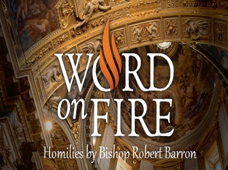 AUDIO HOMILIES & Related Resources  by Bishop Robert Barren