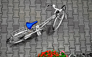 Vintage Bicycele Selective Color Flowers Photography HD Wallpaper
