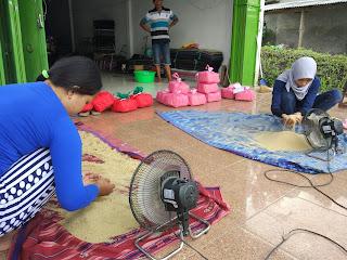 Jual Telur Jangkrik Seluruh Indonesia