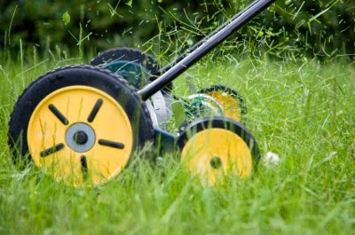 Benefits of Using a Push Lawn Mower