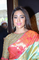 Shriya Saran Looks Stunning in Silk Saree at VRK Silk Showroom Launch Secundrabad ~  Exclusive 113.JPG