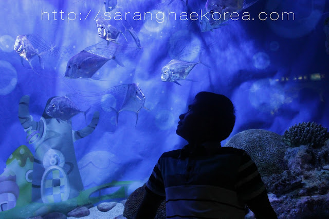 Sea creatures you can see at COEX Aquarium