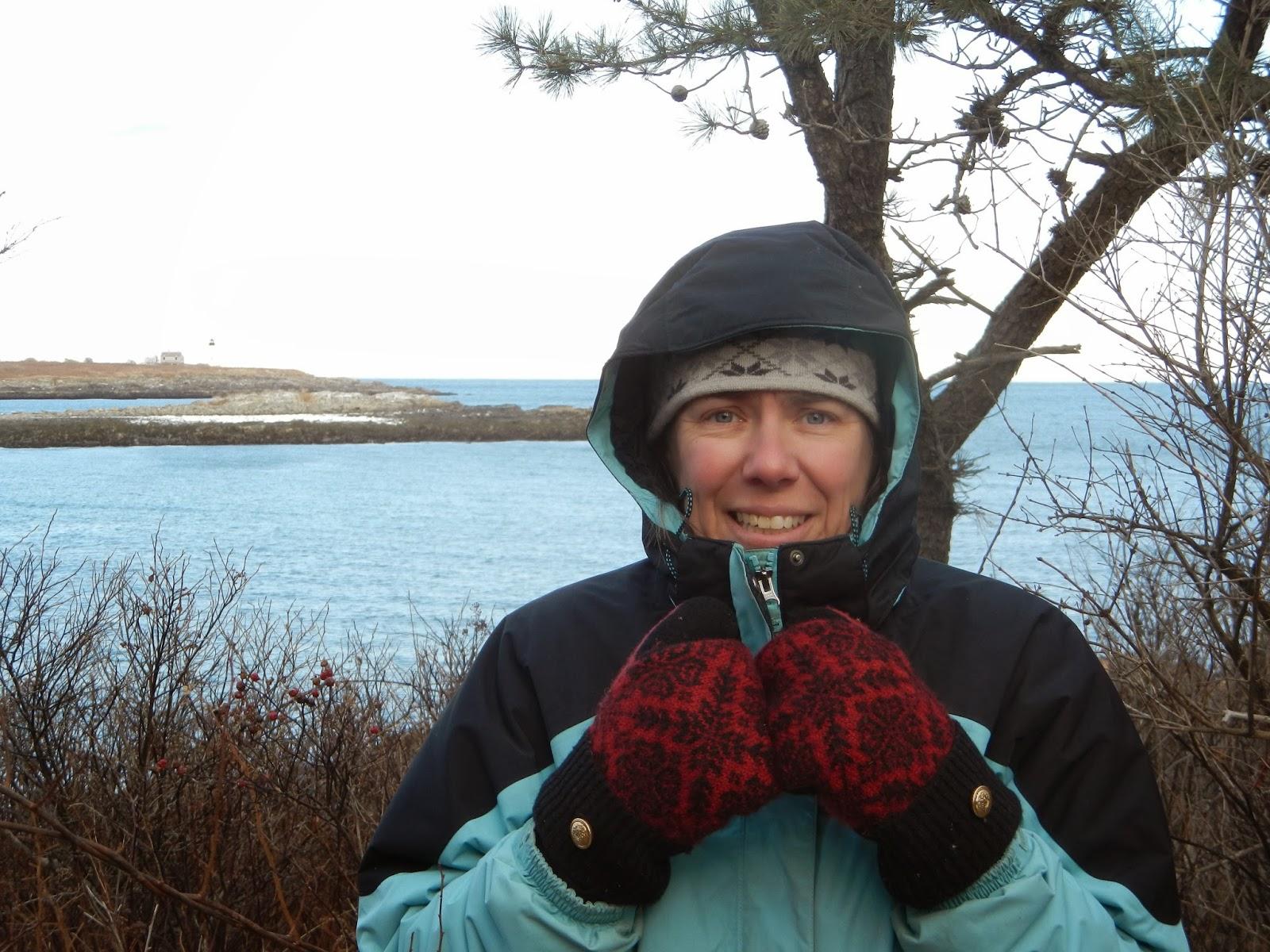 An Ocean Lover In Maine Biddeford Pool Snowy Owl Cape Porpoise