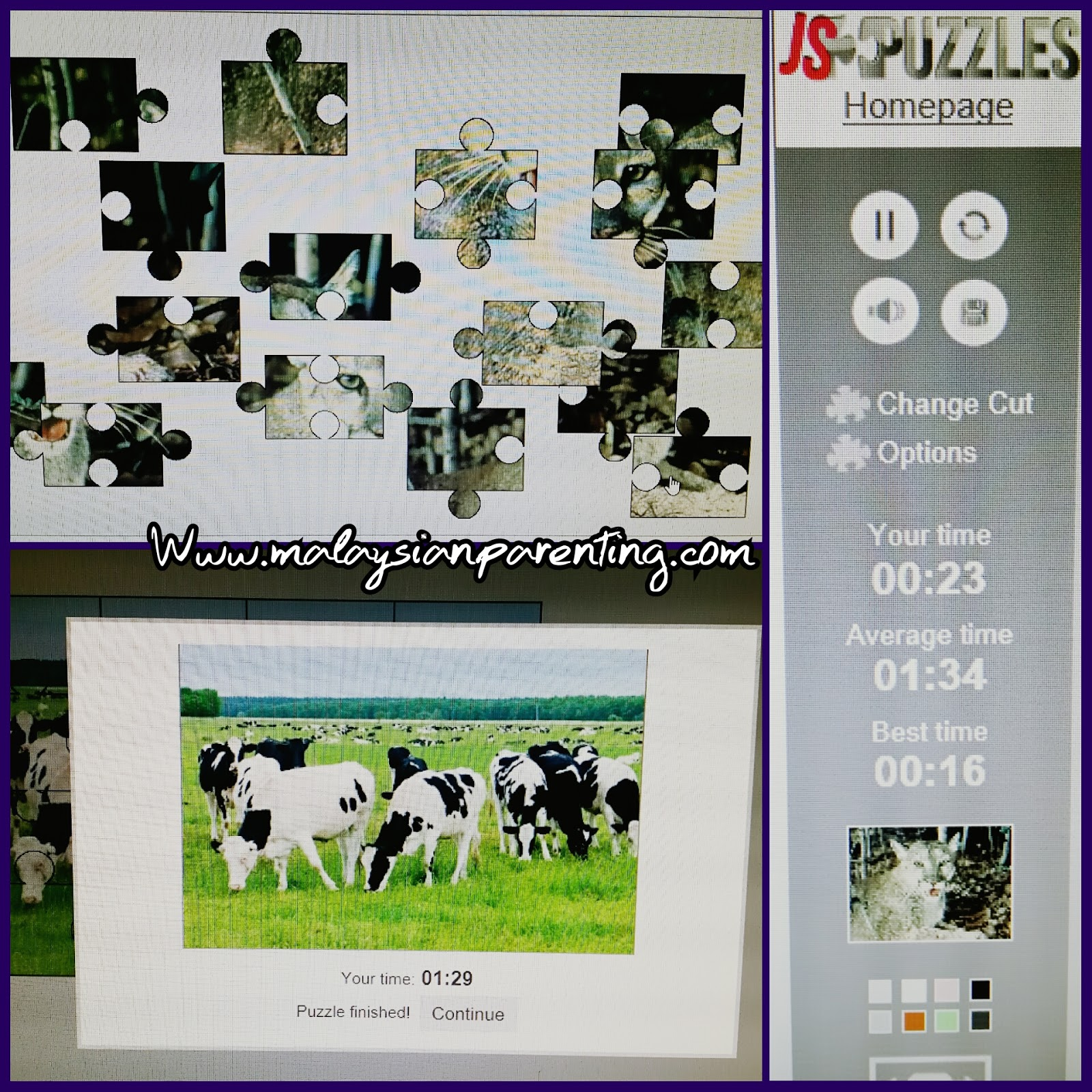 free activity online jigsaw puzzles at www jspuzzles com