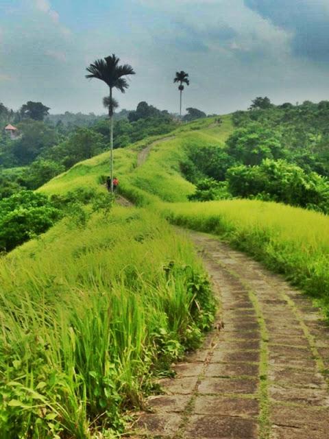 Tempat Wisata Selain Pantai di Bali yaitu Bukit Campuhan