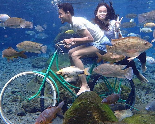 Tinuku.com Umbul Ponggok designed to be Bunaken van Klaten as fresh water snorkeling sites and selfie paradise