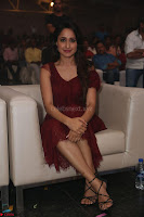 Pragya Jaiswal in Stunnign Deep neck Designer Maroon Dress at Nakshatram music launch ~ CelebesNext Celebrities Galleries 106.JPG
