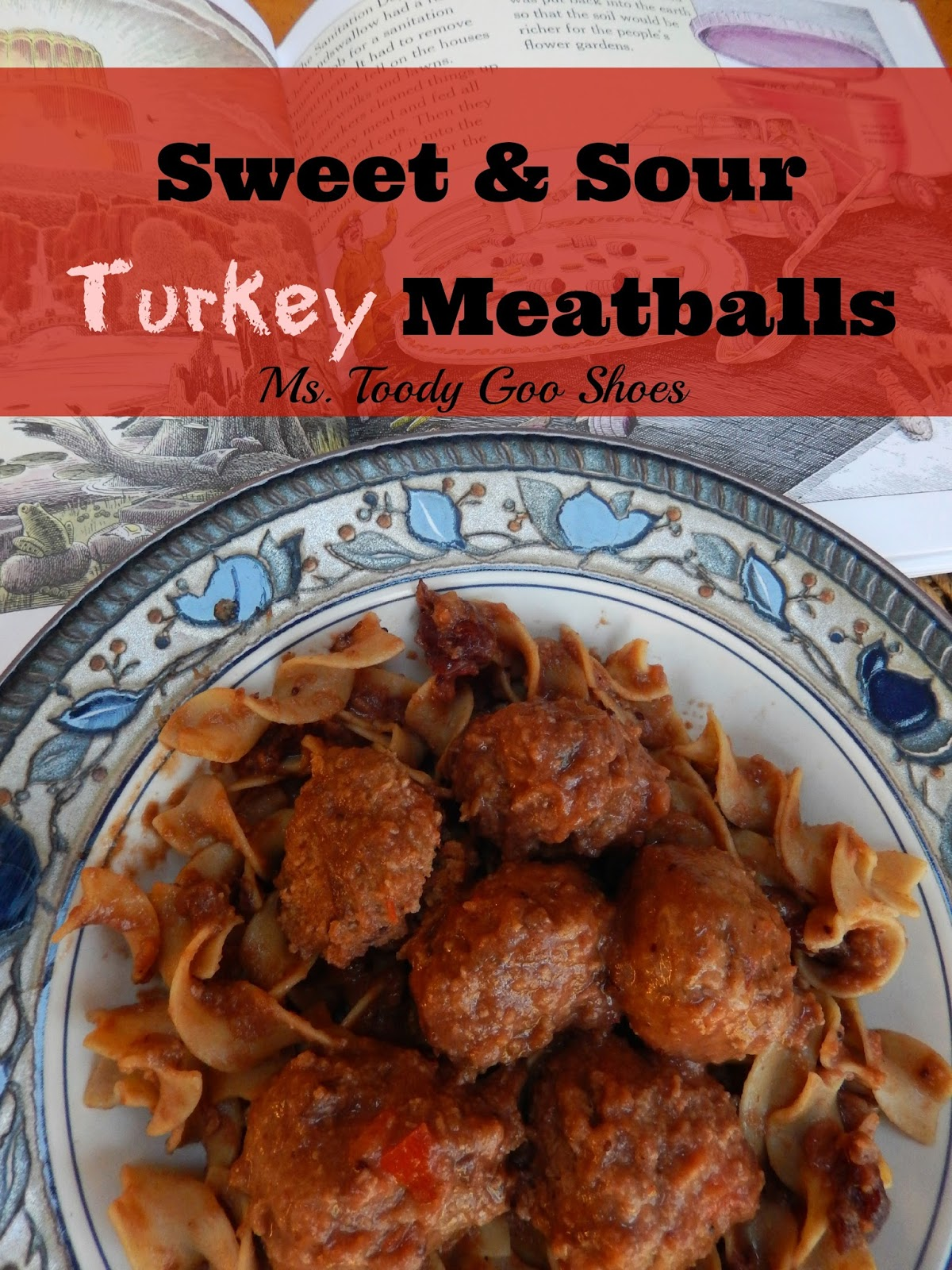 Sweet & Sour Meatballs by Ms. Toody Goo Shoes