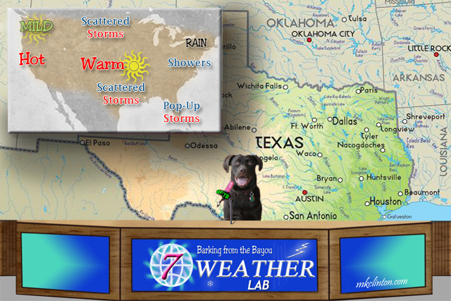 BFTB NETWoof News with Paisley the Weather Lab