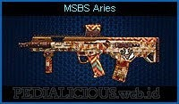 MSBS Aries