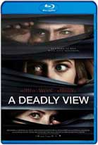 A Deadly View (2018) HD 720p Subtitulada
