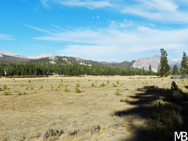 tuolumne meadows yosemite national park california