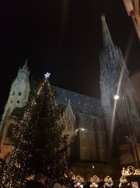 The sharp steeple of St Stephen's Cathedral sticks into the black night sky beside a large Christmas tree draped in white fairy lights.