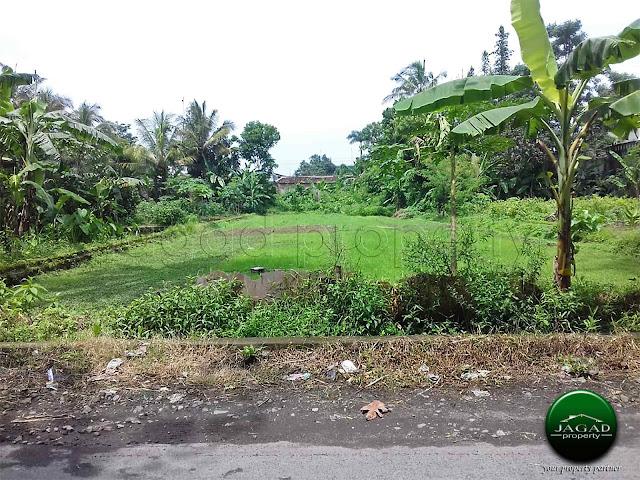 Tanah Luas di Tajem dekat Pasar Stan