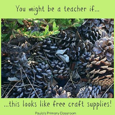 from Paula's Primary Classroom