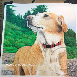Bridie colored pencil drawing