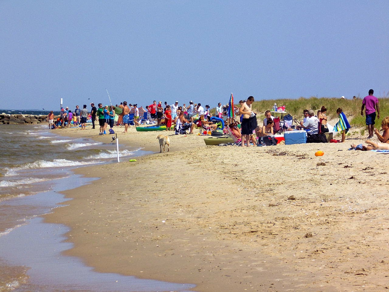 A View from the Beach: Sunday Beach Report 4/14/13