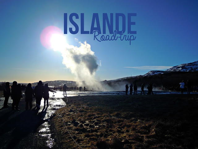 https://laplanquealibellules.blogspot.com/2018/05/road-trip-en-islande-2.html