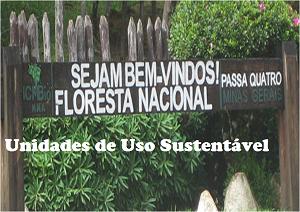 Floresta Nacional - Passa Quatro