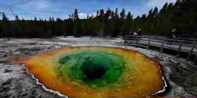 Cientistas descobrem organismos extraterrestres