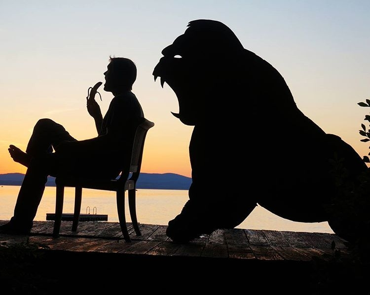 13-Hungry-Gorilla-John-Marshall-Sunset-Selfie-Photographs-with-Cardboard-Cutouts-www-designstack-co