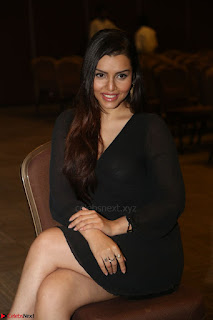 Kyra Dutta in black At Rogue Movie Audio Launch ~  034.JPG