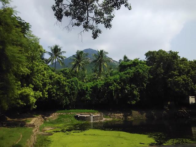 arunachala ramana maharishi