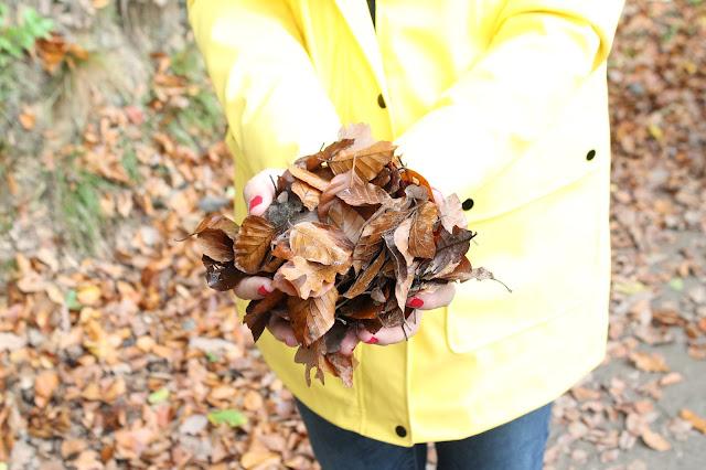 Herbst Liebe Laubhaufen Waldspaziergang Jules kleines Freudenhaus