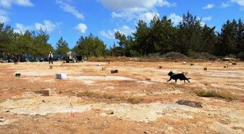 Κρήτη: ομάδα σκύλων για την ανίχνευση δηλητηριασμένων δολωμάτων σε δράση