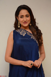 Pragya Jaiswal in beautiful Blue Gown Spicy Latest Pics February 2017 052.JPG