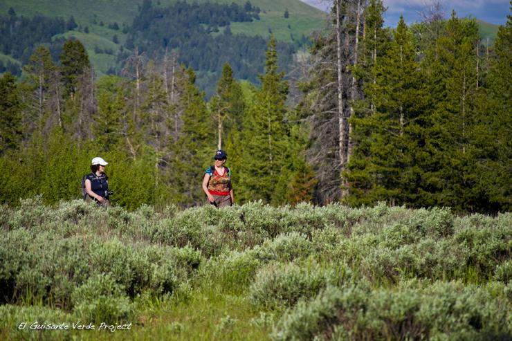 Praderas de Artemisa en Laurance S. Rockefeller Preserve - Grand Teton National Park por El Guisante Verde Project