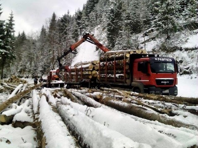 FOTO VIDEO Cum este distrus sistematic DJ 174E: camioane cu masa de trei ori mai mare decât limita de tonaj