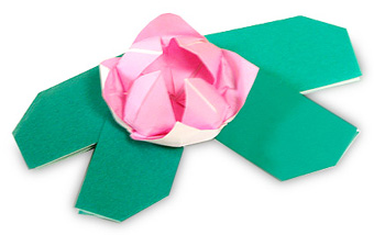 Flowers Origami: Water lily | Paper Origami Guide - photo#29
