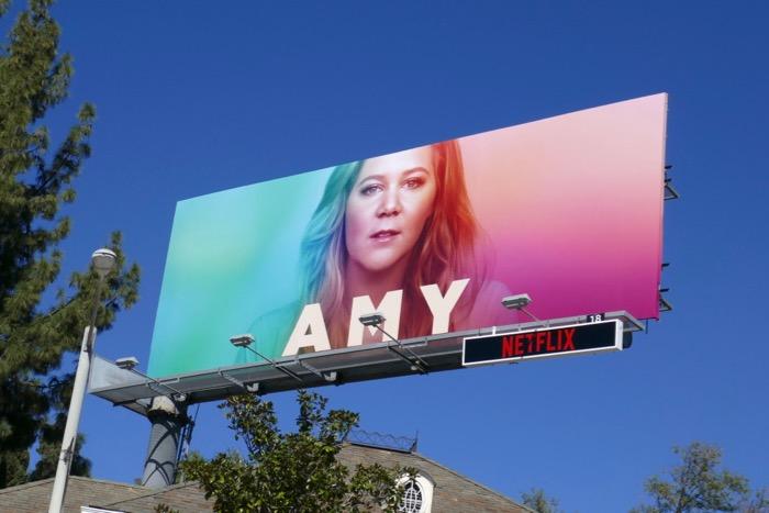 Amy parody A Star Is Born Ally billboard