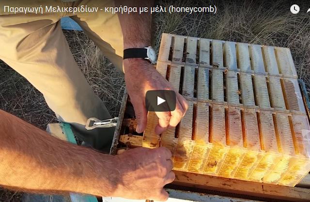Παραγωγή Μελικεριδίων - κηρήθρα με μέλι (honeycomb)