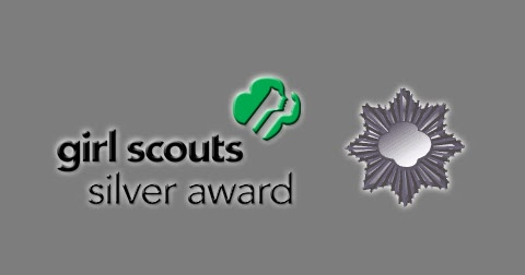 girl-scout-silver-award-pictures