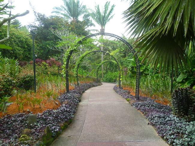 Un bello jardín en el parque