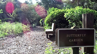 Butterfly Garden in Rainbow Springs State Park, Florida USA