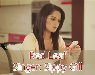 Red Leaf - Sippy Gill