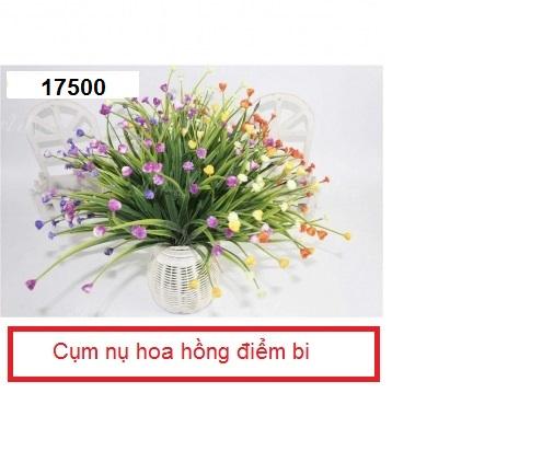 Phu kien hoa pha le o Phu La