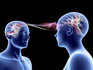 mirror neurons, feelings, negativity,
