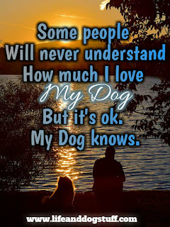 love my dog quotes sayings.