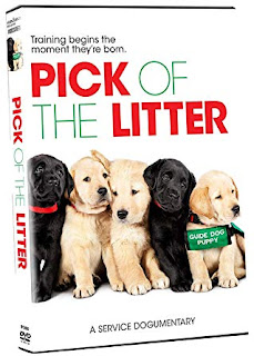 https://www.mpihomevideo.com/products/pick-of-the-litter