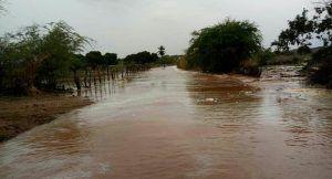 Chuvas fortes arrombam barragem e matam animais no interior da Paraíba
