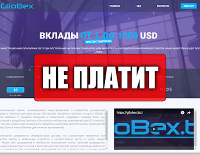 Скриншоты выплат с хайпа gllobex.biz