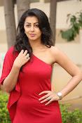 Nikki galarani latest sizzling pics-thumbnail-7