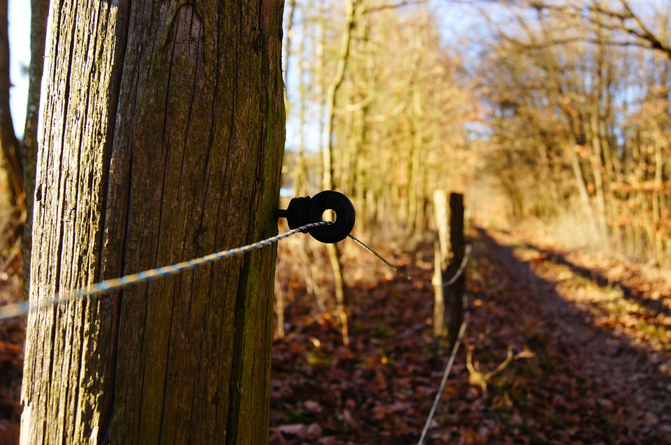 Diy Electric Fence Troubleshooting Savvy Horsewoman