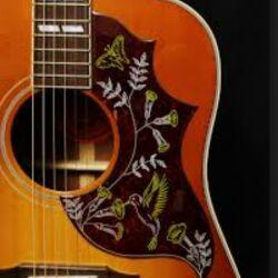 Pickguard gitar